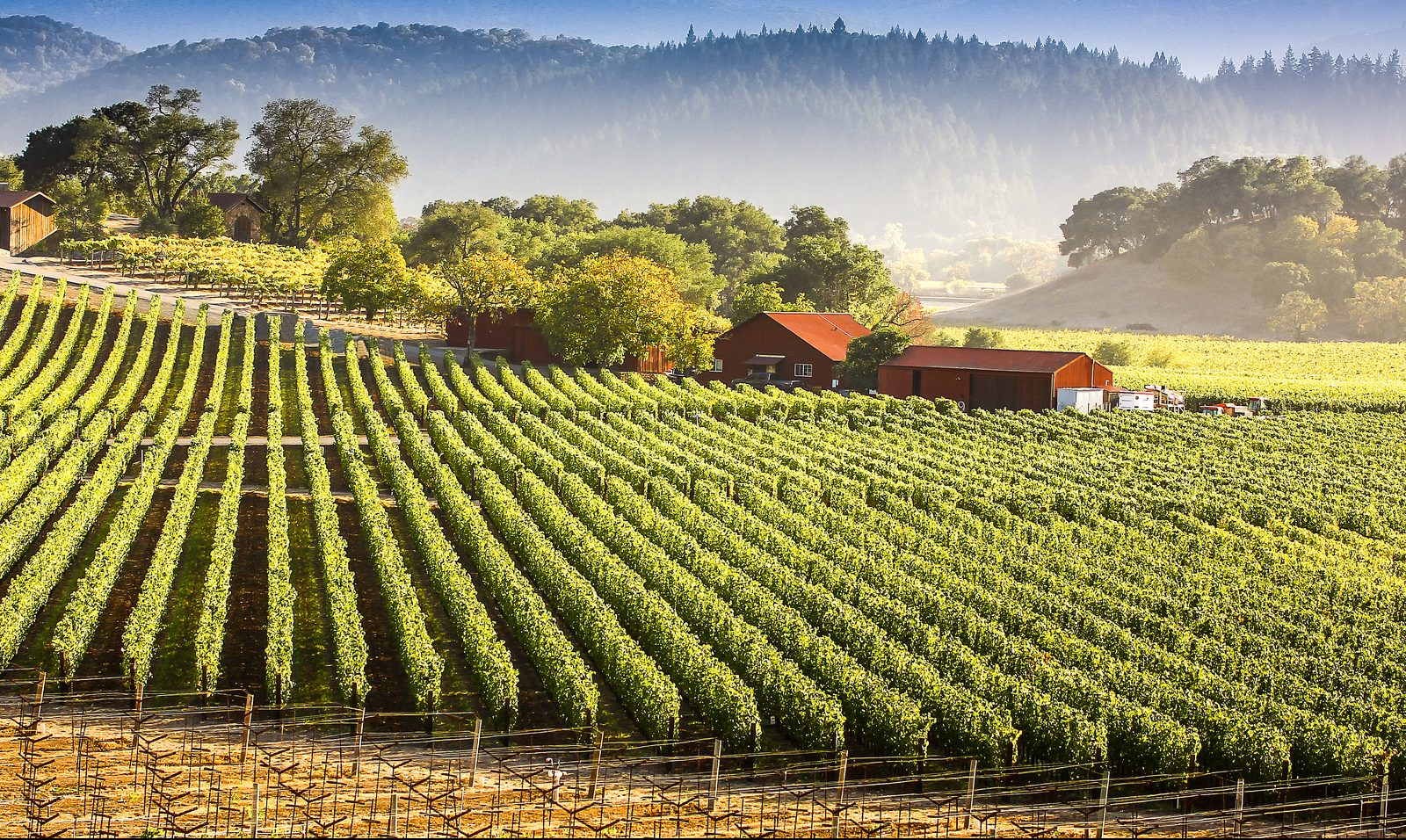 beautiful napa valley farm location for a getaway